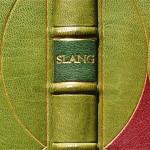 Concerning Slang